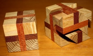 "The ""planks"", made from dark hardwood, can be seen between the ash tree cubes. (Photo courtesy Bernhard Schweitzer)"